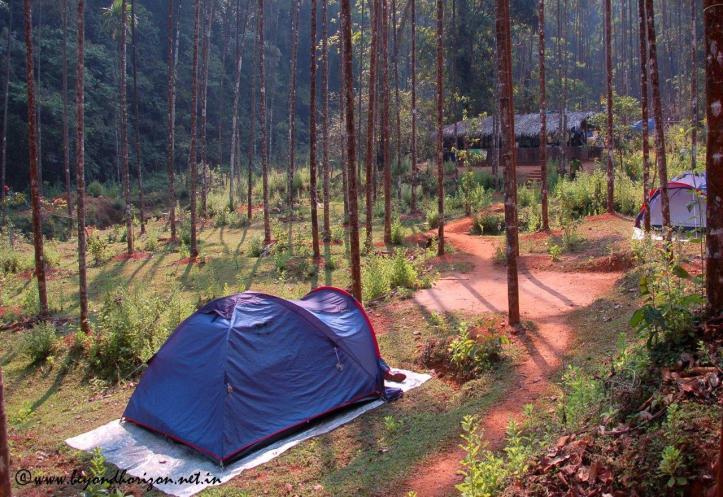 Agumbe_Camp